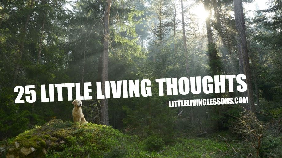 25 Little Living Thoughts