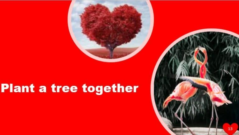 Plant a tree together